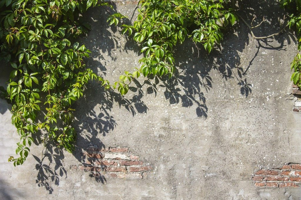 Stucco stone